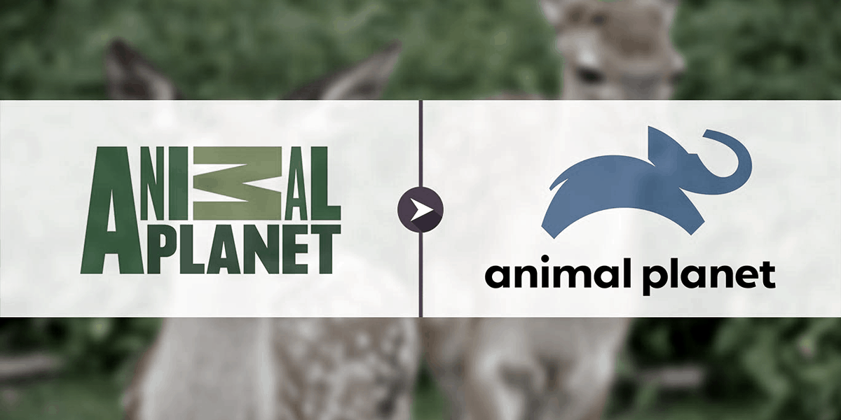 How to Watch Animal Planet Without Cable